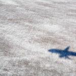 Пассажиропоток российских авиакомпаний в страны СНГ вырос впервые с начала года